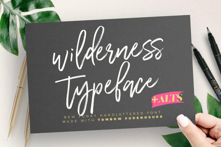 Шрифт Wilderness скачать бесплатно