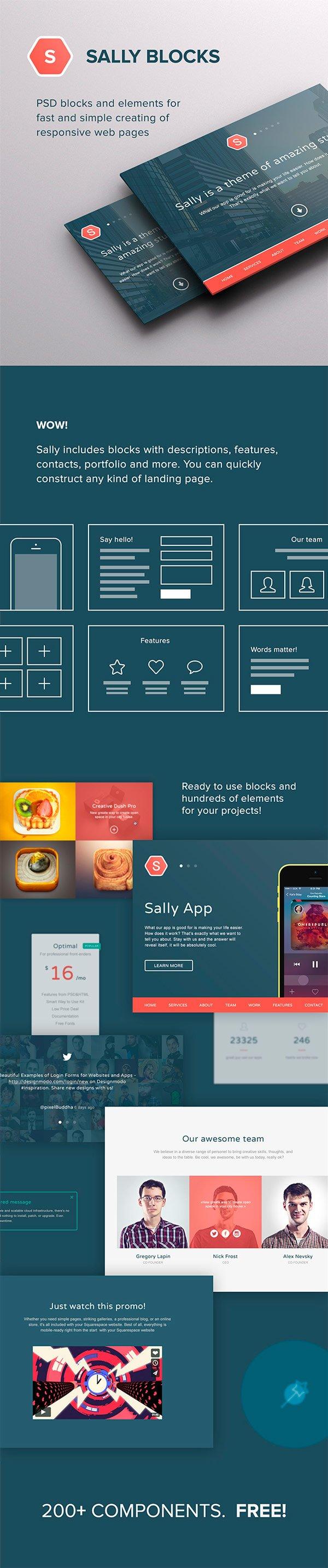 Sally Blocks элементы web-интерфейса (.Psd) скачать бесплатно