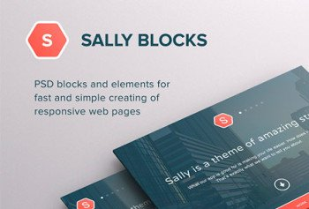sally_blocks_min