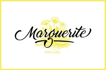 thumb-marguerite